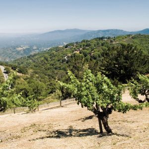 World-Acclaimed Legendary Napa Valley Wineries